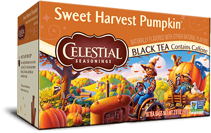 Sweet Harvest Pumpkin Black Tea
